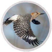 Golden-fronted Woodpecker 2 Round Beach Towel