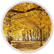 Round Beach Towel featuring the photograph Golden Ginkgo by Candice Trimble