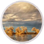Golden Hour In The Refuge Round Beach Towel