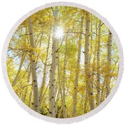 Round Beach Towel featuring the photograph Golden Sunshine On An Autumn Day by James BO Insogna