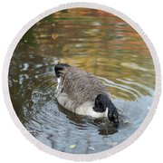 Round Beach Towel featuring the photograph Goose Head In Water by Scott Lyons