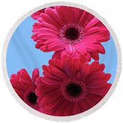 Gorgeous Red Gerberas In The Sky Round Beach Towel