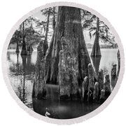 Grand Lake Cypress Round Beach Towel