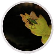 Grasshopper Round Beach Towel