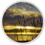 Grassy Shoreline Sunrise Round Beach Towel