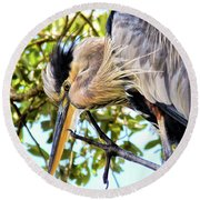 Great Blue Heron Close Up Round Beach Towel