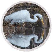 Great Egret In Breeding Plumage Dmsb0154 Round Beach Towel