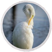 Great Egret - Preening Time Round Beach Towel