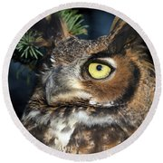 Round Beach Towel featuring the photograph Great Horned Owl 10181801 by Rick Veldman
