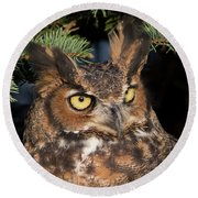 Round Beach Towel featuring the photograph Great Horned Owl 10181802 by Rick Veldman