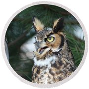 Round Beach Towel featuring the photograph Great Horned Owl 5151801 by Rick Veldman