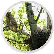Great Horned Owl And Babies Round Beach Towel
