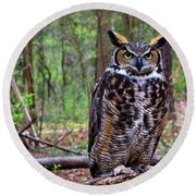 Great Horned Owl Standing On A Tree Log Round Beach Towel