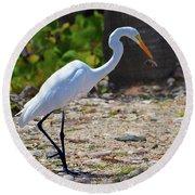 Great White Egret Hunter Round Beach Towel