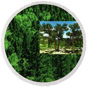 Round Beach Towel featuring the photograph Green As Ever Forest by Mike Braun