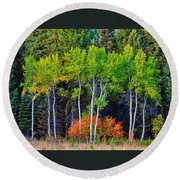 Green Aspens Red Bushes Round Beach Towel