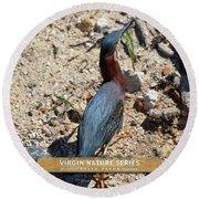 Green Heron Strut - Virgin Nature Series Round Beach Towel