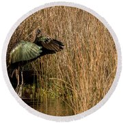 Green Ibis Round Beach Towel