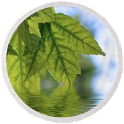 Green Leaf Reflections Round Beach Towel