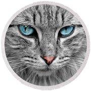 Grey Cat With Blue Eyes Round Beach Towel