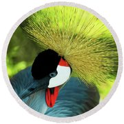 Round Beach Towel featuring the painting Grey Crowned Crane Gulf Shores Ab A101218 by Mas Art Studio