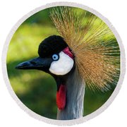 Grey Crowned Crane Gulf Shores Al Collage 10 Diptych Round Beach Towel