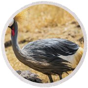 Grey Crowned Crane Round Beach Towel