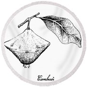 Hand Drawn Of Cambuci Fruit On White Background Round Beach Towel
