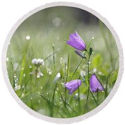 Harebells And Water Drops Round Beach Towel