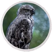 Hawk Eagle  Round Beach Towel