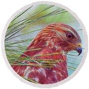 Hawk In Paint Round Beach Towel