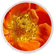 Heart Of The Orange Rose Round Beach Towel