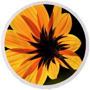 Helianthus Round Beach Towel
