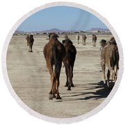 Herd Of Camels Crossing The Highway Near  Rissani Round Beach Towel