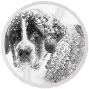 Round Beach Towel featuring the photograph Hero by Chris Armytage
