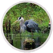 Heron In Beaver Pond Round Beach Towel