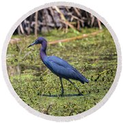 Heron Portrait Round Beach Towel