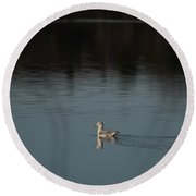 Herring Gull Round Beach Towel