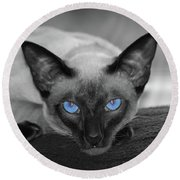 Hey There Blue Eyes - Siamese Cat Round Beach Towel