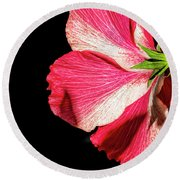 Hibiscus In Shadow Round Beach Towel