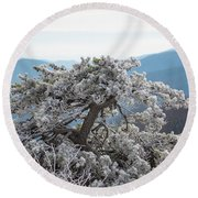 Hoarfrost In The Blue Ridge Mountains Round Beach Towel