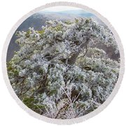 Hoarfrost On Trees Round Beach Towel