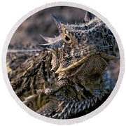 Horn Toad Round Beach Towel