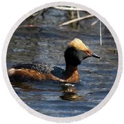 Round Beach Towel featuring the photograph Horned Grebe 102713 by Rick Veldman