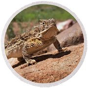 Horny Toad Round Beach Towel