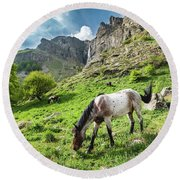 Horse On Balkan Mountain Round Beach Towel