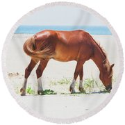 Horse On Beach Round Beach Towel