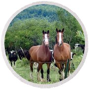 Horses And Cows.  Round Beach Towel