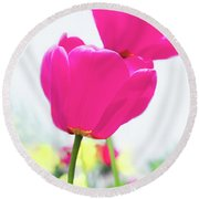 Round Beach Towel featuring the photograph Hot Pink Prelude by Emily Johnson