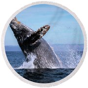Humpback Breaching - 01 Round Beach Towel